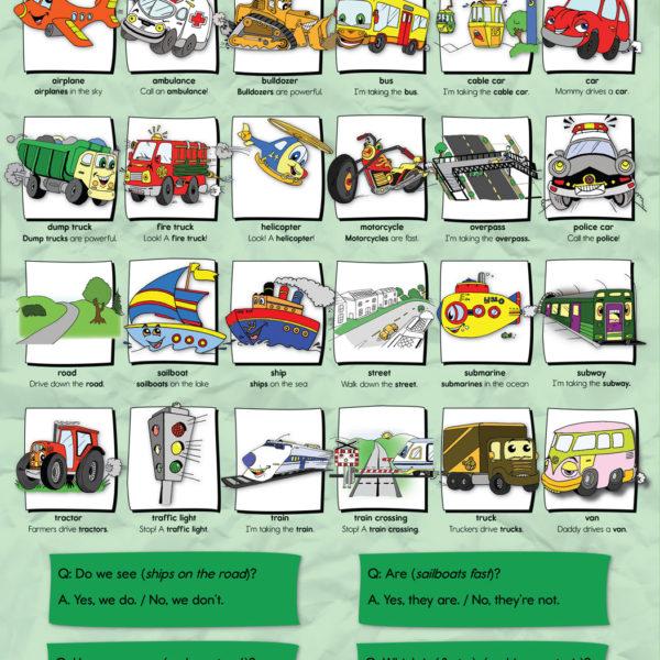 15-Transportation